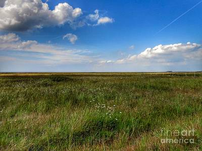 Photograph - A View Across Birkdale Common by Joan-Violet Stretch