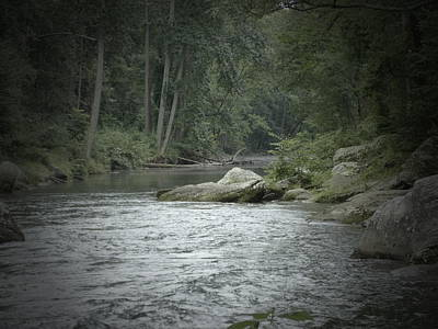 Art Print featuring the photograph A View Downstream by Donald C Morgan