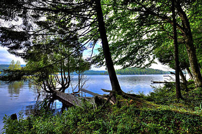 Photograph - A View From Covewood by David Patterson