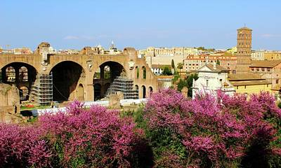 Photograph - A View In Rome by Janice Aponte
