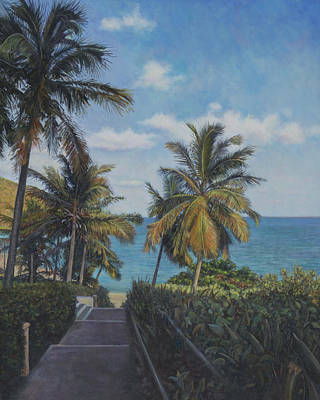 Painting - A View In The Virgin Islands by David P Zippi