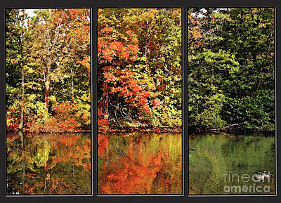 Photograph - A View Of Autumn by Rita Brown
