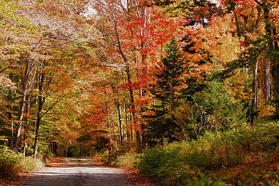 Photograph - A View Up Jefferson Notch Road by Jeff Folger