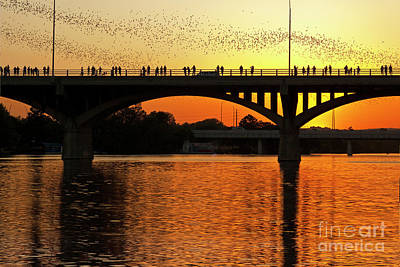 A Vivid Sunset Surrounds The Mexican Free-tailed Bats As They Fly Out Of Congress Avenue Bridge Art Print by Herronstock Prints