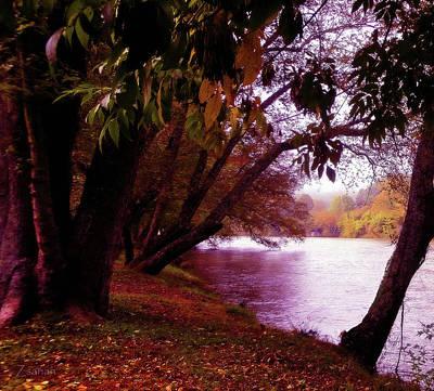 A Walk By The River Art Print