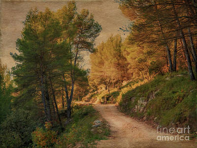Path Photograph - A Walk In Provence. by Robert Brown