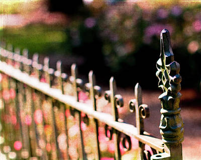 Gate Photograph - A Walk In The Garden by Rebecca Cozart