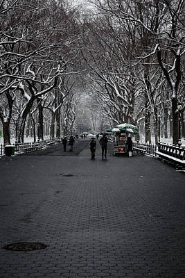 Photograph - A Walk In The Park by Anthony Fields