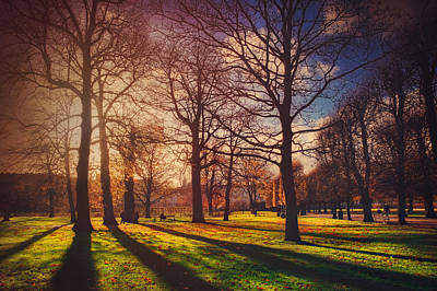 Winter Light Photograph - A Walk In The Park by Carol Japp