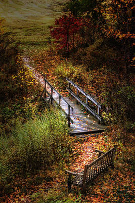 Bridge Photograph - A Walk In The Park II by Tom Mc Nemar