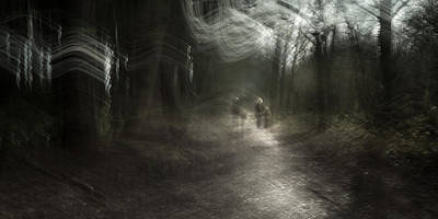 Icm Photograph - A Walk In The Woods by Chris Dale