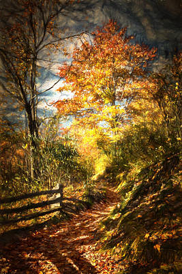 Digital Art - The Lighted Path by John Haldane