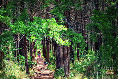 A Walk Into The Forest Art Print by Tamyra Ayles