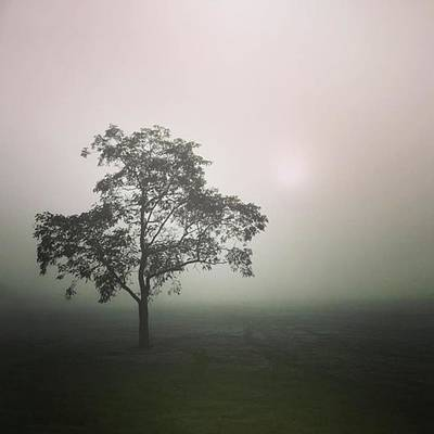 Photograph - A Walk Through The Clouds #fog #nuneaton by John Edwards