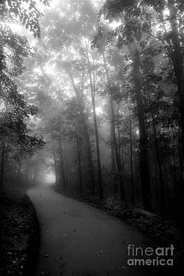 Photograph - A Walk Through The Fog by Michael Eingle