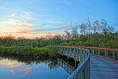 A Walk Through The Mangroves Art Print by HH Photography of Florida