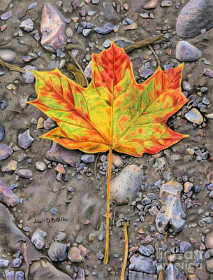 Maple Leaf Art Painting - A Walk Through The Woods by Sarah Batalka