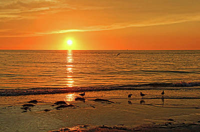 A Summer Evening Photograph - A Warm Summer Night by HH Photography of Florida