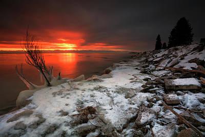 Photograph - A Warming Presence by CA Johnson