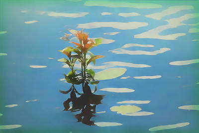 Digital Art - A Water Plant. by Rusty R Smith