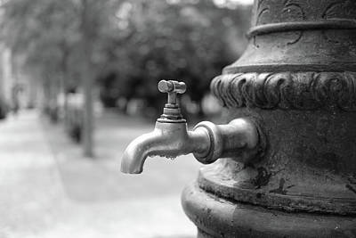 Brass Leafs Photograph - A Water Tap In The Park by Marco Oliveira
