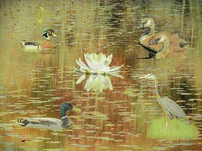 Digital Art - A Waterfowl Collage by Rusty R Smith