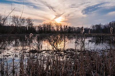 Freehold Photograph - A Wetlands Sunset by Kristopher Schoenleber