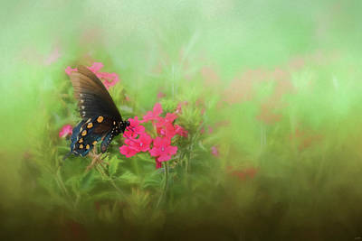 Photograph - A Whisper In The Garden Butterfly Art by Jai Johnson