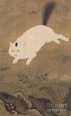 Ground Painting - A White Cat by Lu Ji