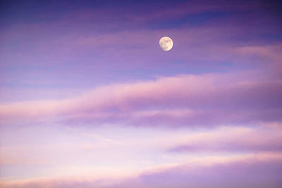 Purple Photograph - A White Moon In Twilight by Ellie Teramoto