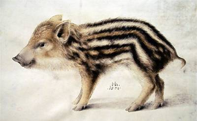 Painting - A Wild Boar Piglet by Hans Hoffmann