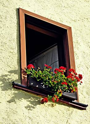 Photograph - A Window In Schierstein 17 by Sarah Loft