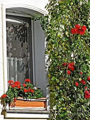 Photograph - A Window In Schierstein 18 by Sarah Loft