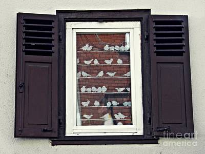 Photograph - A Window In Schierstein 20 by Sarah Loft