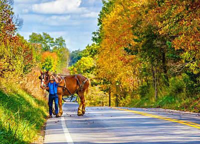 Plow Horse Photograph - A Windy Day by Steve Harrington