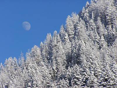 Photograph - A Winter Moon by DeeLon Merritt