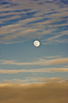 Photograph - A Winter Moon by Robert Harshman