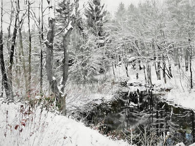 Digital Art - A Winter Reflection Scene. by Rusty R Smith