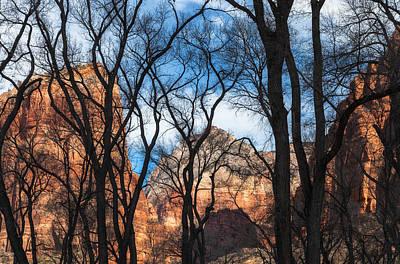 Photograph - A Winterday Dream by Jonathan Nguyen