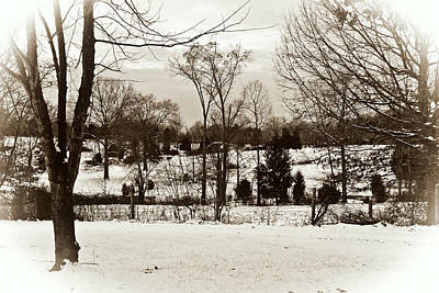 Photograph - A Winters Day by Laura DAddona