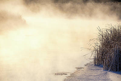 Photograph - A Winter's Morning-1 by Penny Meyers