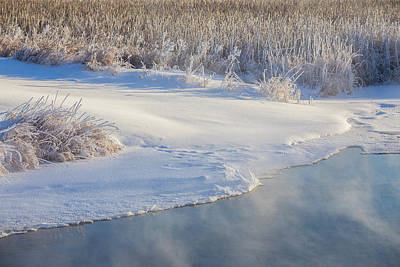 Photograph - A Winter's Morning-2 by Penny Meyers