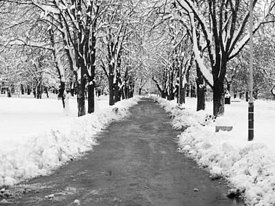 A Winter's Path Art Print by Rae Tucker