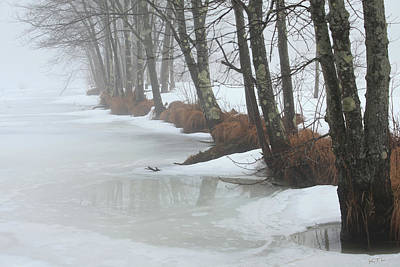 A Winter's Scene Art Print