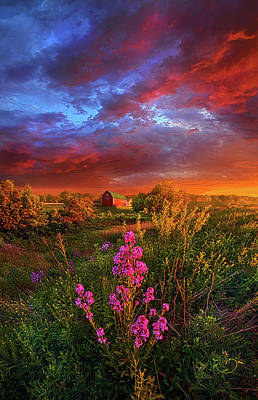 Photograph - A Wisconsin Story by Phil Koch