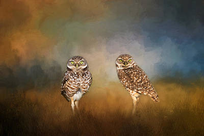 Photograph - A Wise Pair by Kim Hojnacki