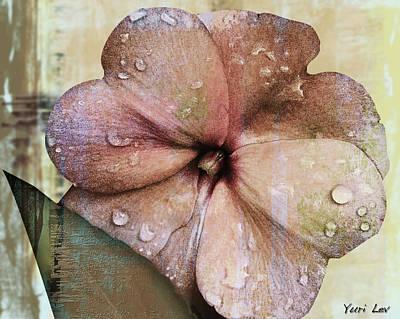 Digital Art - Petunia Abstract With Raindrops by Yuri Lev