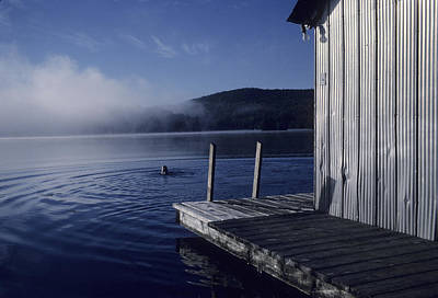 Swim Ladder Photograph - A Woman Swims In A Lake On An Early by Taylor S. Kennedy