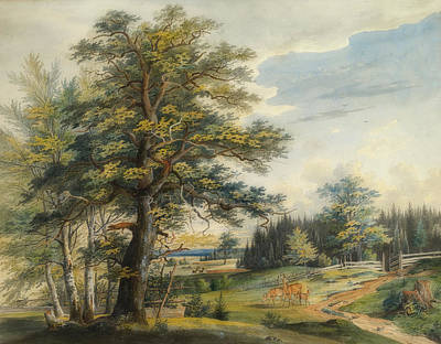 Painting - A Wooded Landscape With A Stag by Carl Lebschee