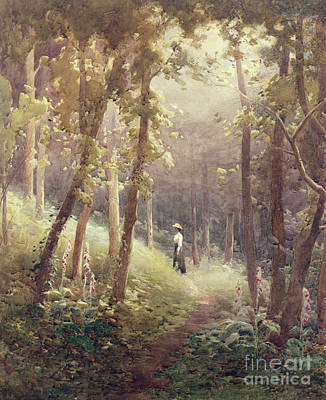 Foxgloves Painting - A Woodland Glade by John Farquharson